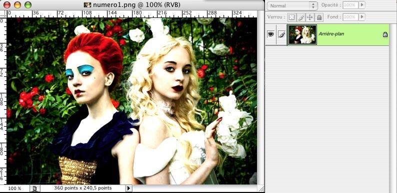 [Photoshop] Effet idyllique sur une image Image_17