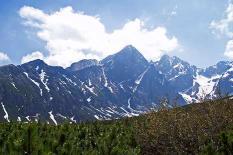Bières : La Tatran (SLQ) et la Tatra (POL) Tatra-12