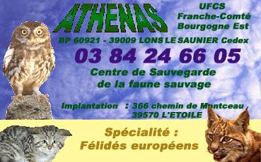 Centre de Sauvegarde de la Faune Sauvage ATHENAS (Jura) Chapea11