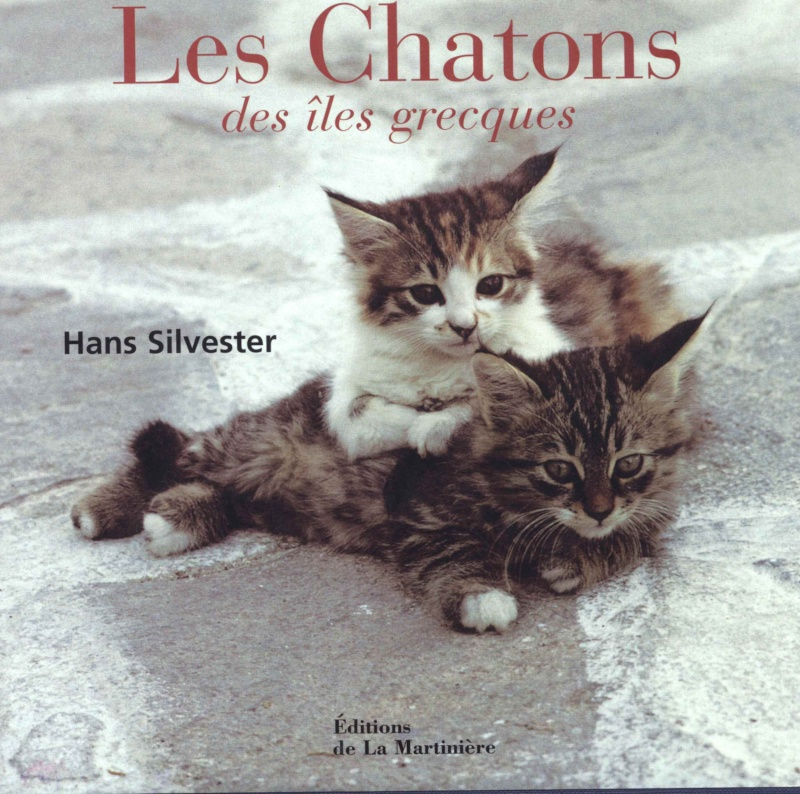 Le photographe Hans Silvester Chaton10