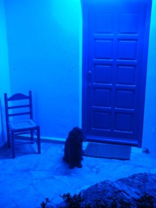 Notre Maison à Naxos  Dsc01910