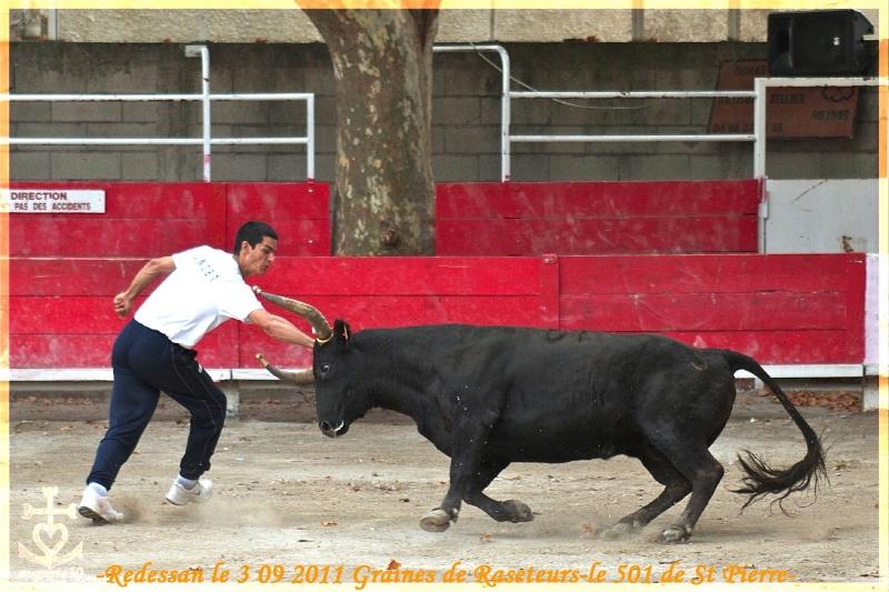Redessan le samedi 3 septembre 2011 Graines de Raseteurs L1010