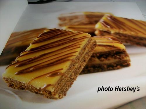 Carrés au chocolat glacés au beurre d'arachide Carras10