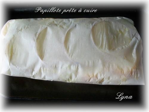 Papillote de légumes Papill11