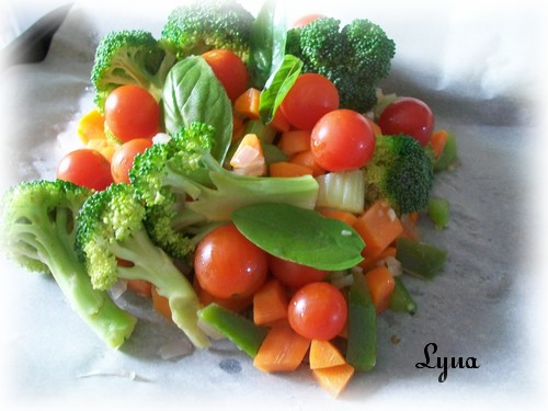 Papillote de légumes BBQ Papill16