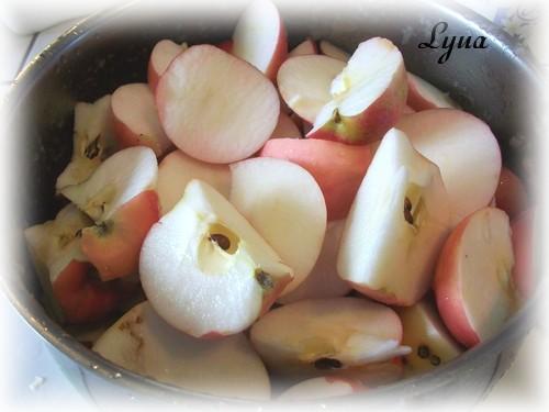 Pâtes de fruit aux pommes  Pate_f10