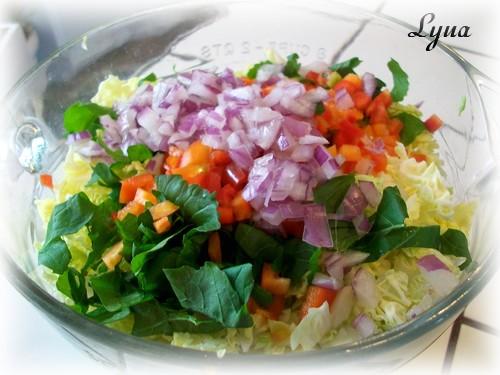 Salade de chou de Savoie Salade20