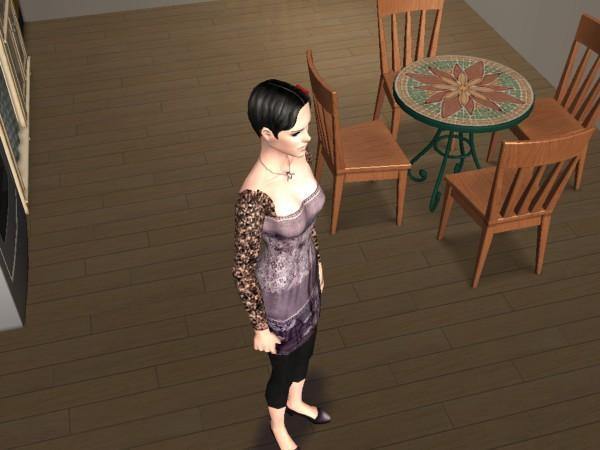 Nos Persos en Sims (Présentation du jeu) 1010