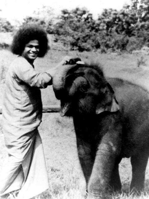 LOVE ~ Sathya Sai Baba Old_pi10