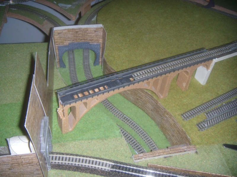 les trains Dscn0610