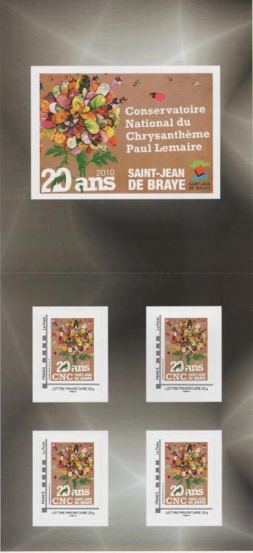 45 - Saint-Jean-de-Bray -Conservatoire National Chrysanthème 009_3610