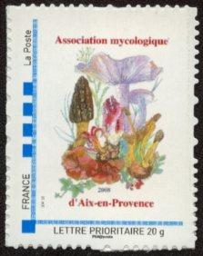 13 - Aix-en-Provence - Association Mycologique Timbre26