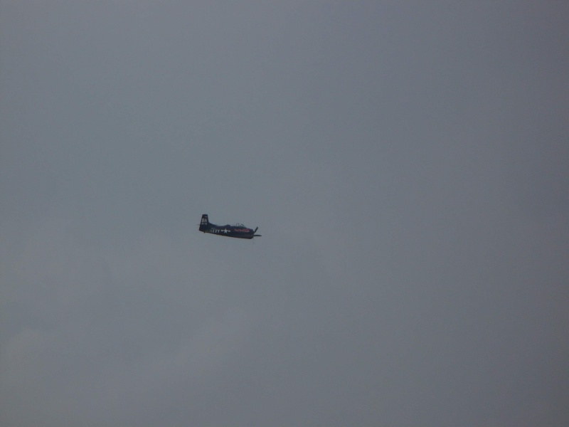 Mitinguri aeriene Avion10