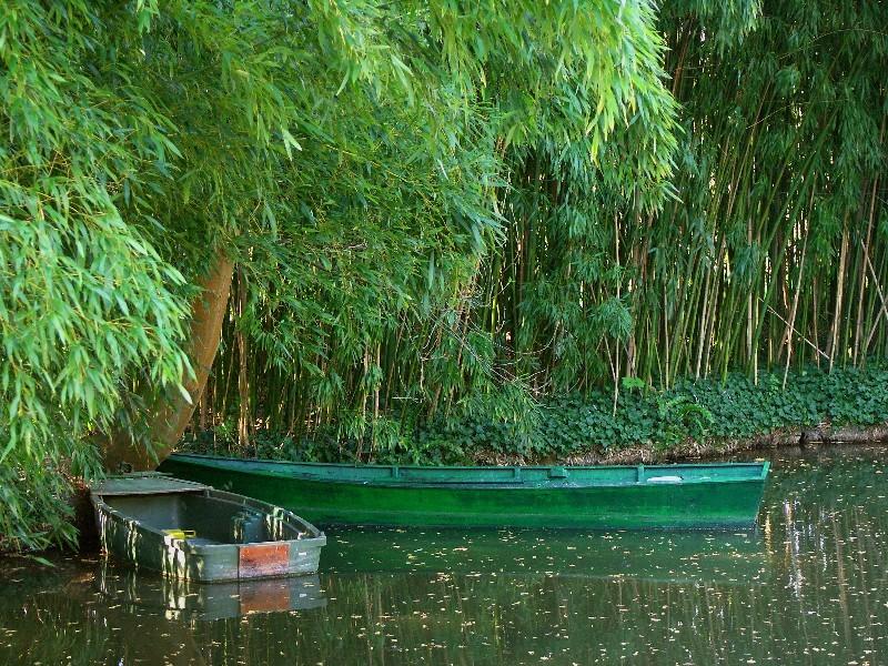 Fil Vert 2007-054