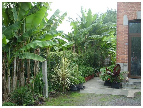 Visite d'un jardin privé. Entree10