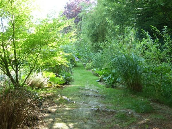 Visite de mon jardin Jardin17