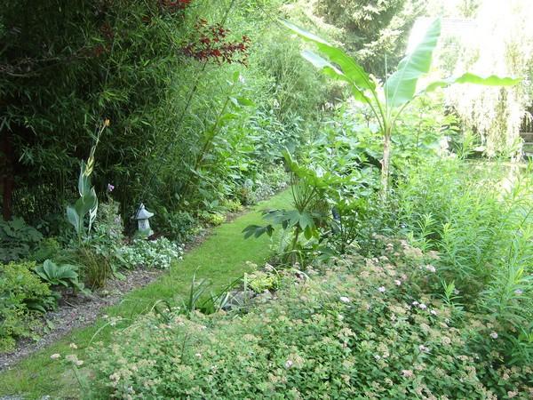 Visite de mon jardin Jardin22