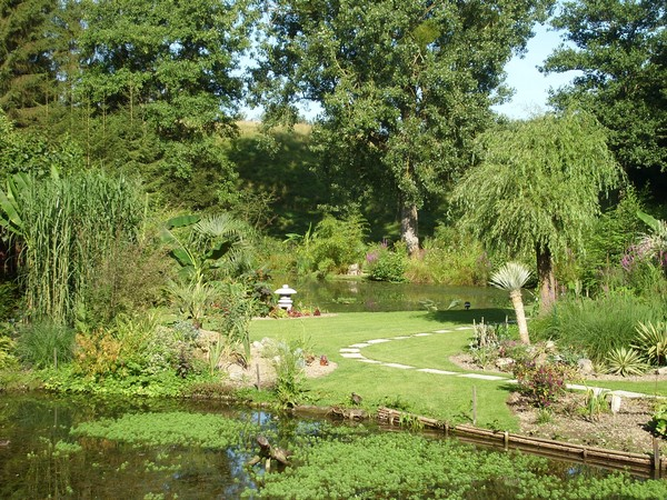 Visite de mon jardin Jardin27