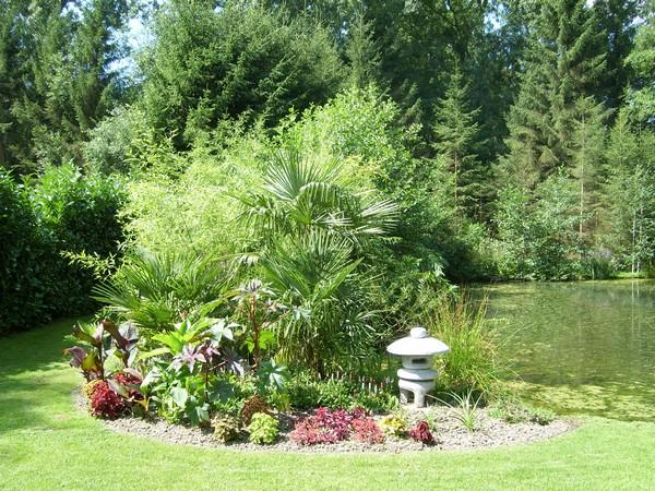 Visite de mon jardin Jardin29