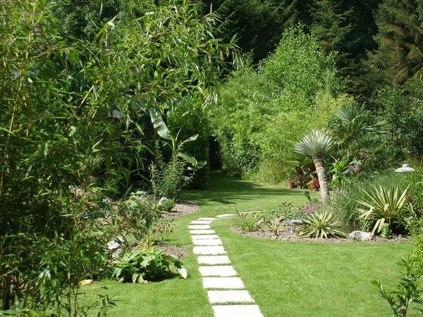 Visite de mon jardin Jardin30