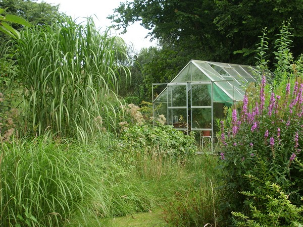 Visite de mon jardin Jardin32