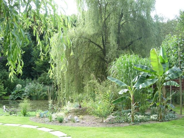 Visite de mon jardin Sl275611