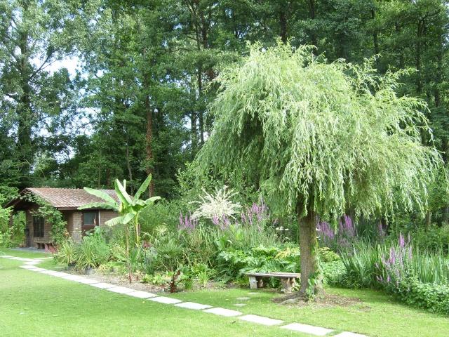 Visite de mon jardin Sl275710