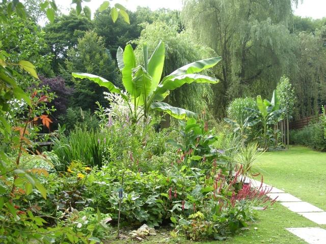 Visite de mon jardin Sl275711