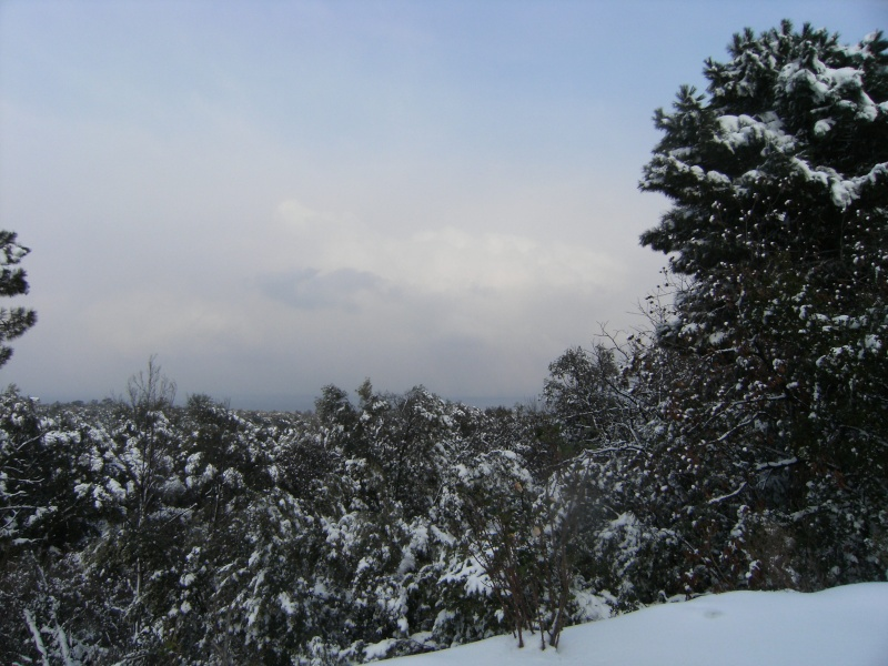 EN DIRECT. La neige paralyse la Haute-Corse Dscf1258