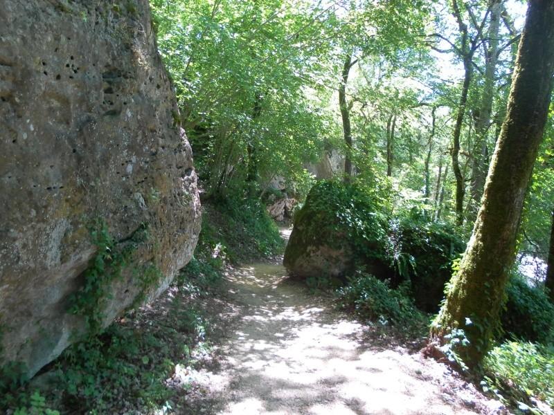 Vacances dans le Périgord noir Sam_6613