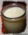 Yaourts sans yaourtière Yaourt10