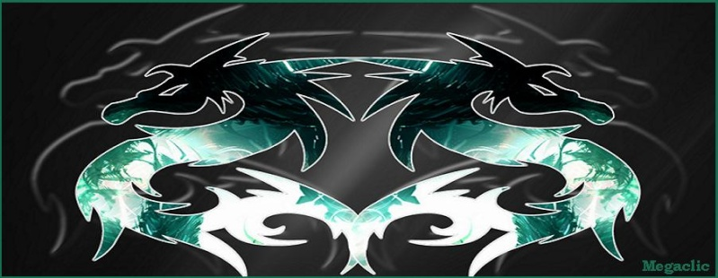 FORUM DE MEGACLIC - Portail Dragon11