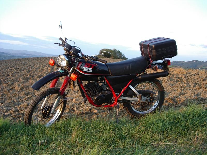 DTMX 125cc Membres / Mod. 1986 Imgp8712