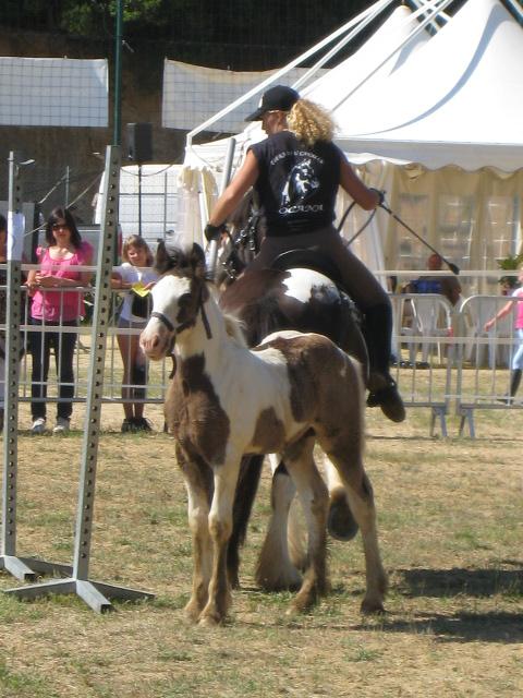 Fête du Cheval à Ocana Fete_d10