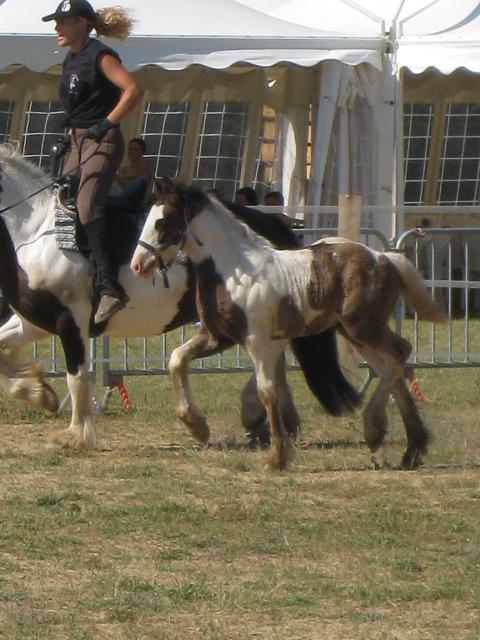 Fête du Cheval à Ocana Fete_d13