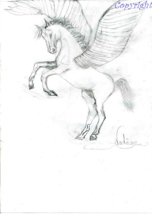 Mes dessins au fusain  30307610