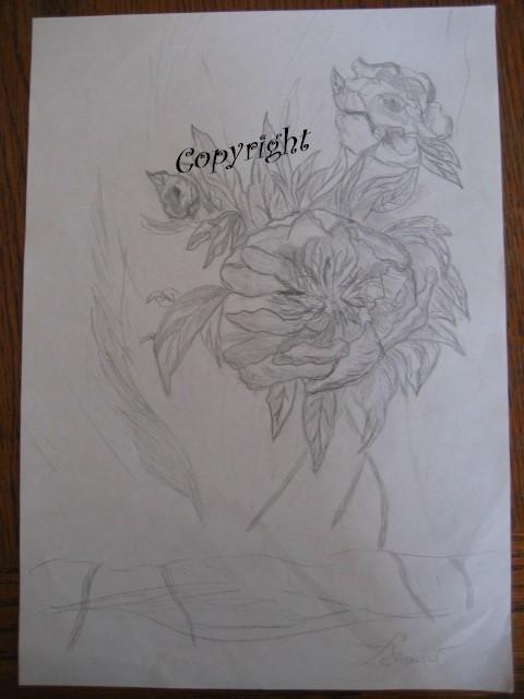 Mes dessins au fusain  Fleurs10