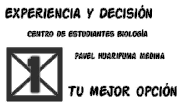 Listas Candidatas a las elecciones del Centro de Estudiantes Dibujo10