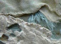 La photo du mois de JANVIER 2012 . textile Photo_11