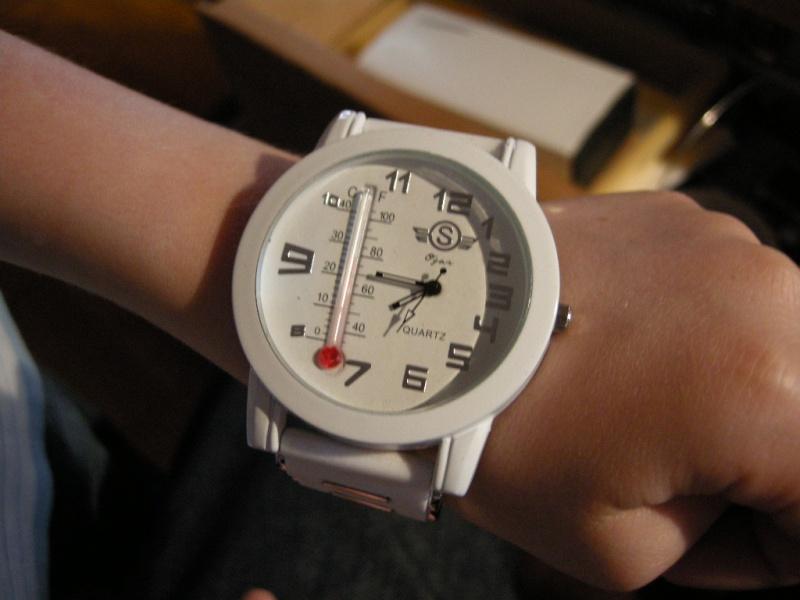 Avez-vous au moins une montre de plus de 45 mm de diamètre ? Dscn0418