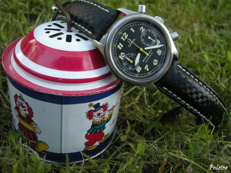 Feux de vos montres monté sur Carbon Hirsch - Page 2 Dscn0717