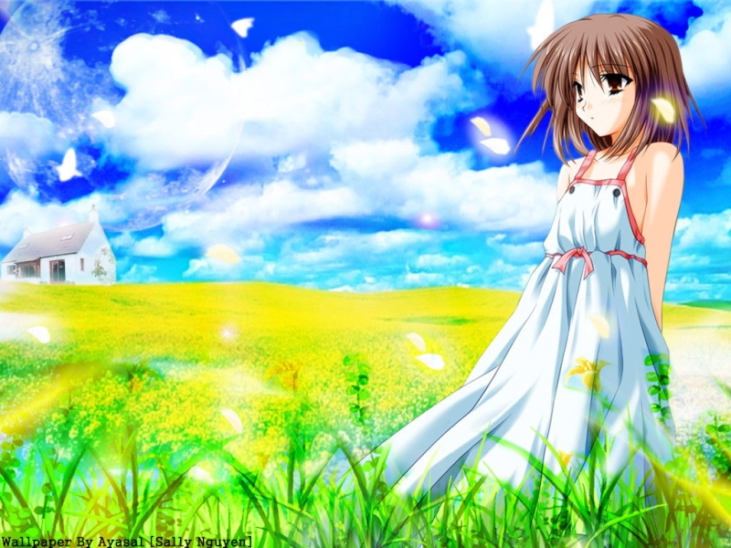 Primavera anime. Anime_11