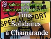 """HANDICAP et CITOYENNETE """"Tous solidaires à Chamarande """" Chamar10"""
