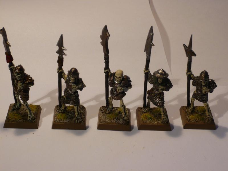Armée Comtes Vampires (en cours de peinture ) Gdc10