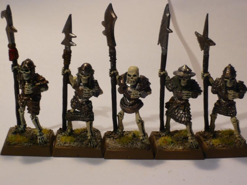 Armée Comtes Vampires (en cours de peinture ) Gdc_210