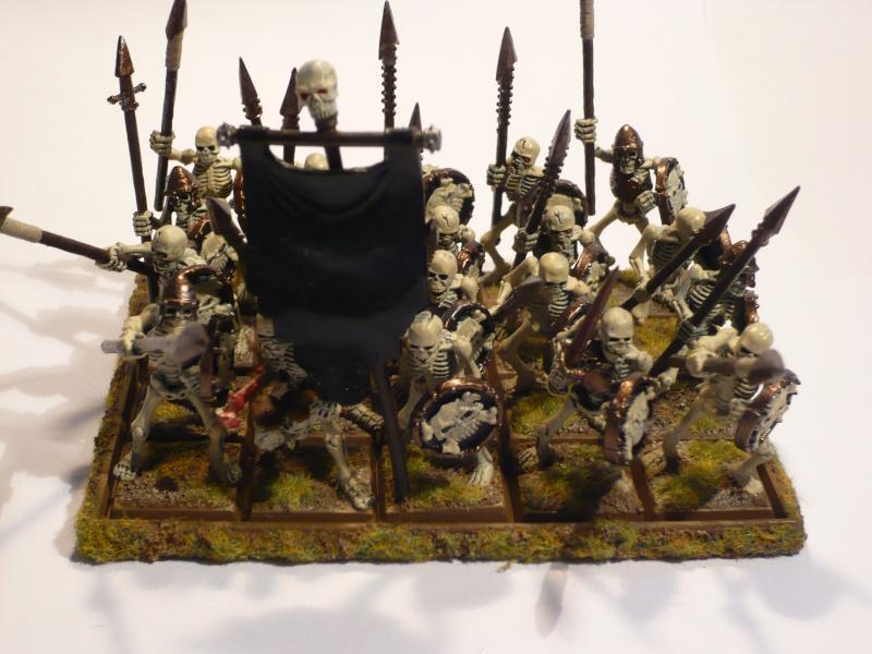 Armée Comtes Vampires (en cours de peinture ) Squele10