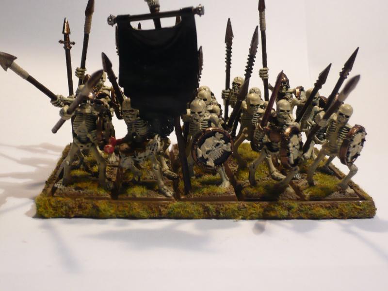 Armée Comtes Vampires (en cours de peinture ) Squele11