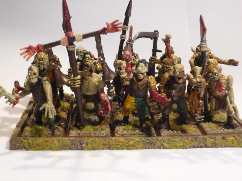 Armée Comtes Vampires (en cours de peinture ) Zombie11