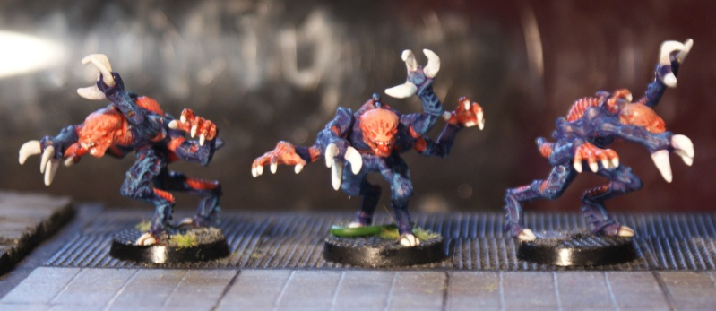 Projet perso : Space Crusade 3D ! Dsc09215