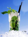 Le bar de juillet 2012 - Page 47 Mojito10
